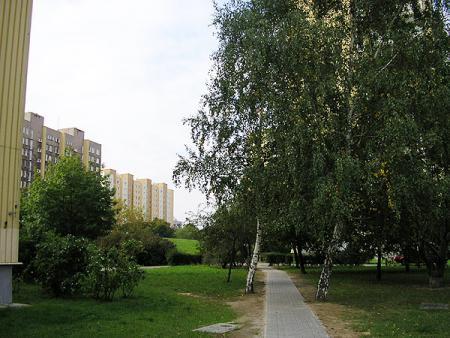 alejka wzdłuż ul.Ostrobramskiej